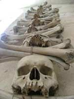 Bone decorations in the Kutna Hora ossuary