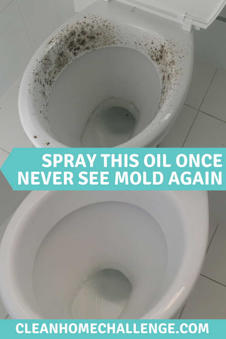 How To Remove Mould Naturally Clean Home Challenge Cleaning Mold Toilet Cleaning Mold Remover