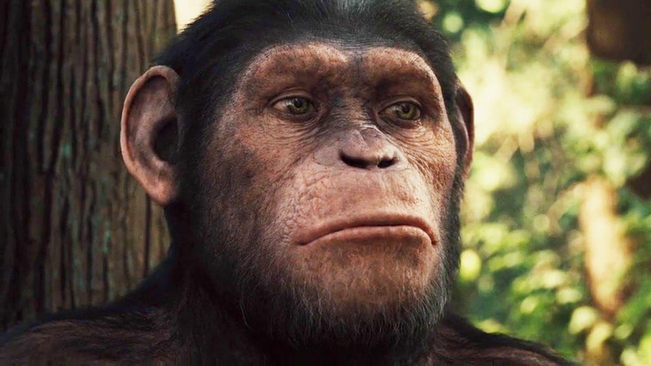 Planet Der Affen Prevolution 2011 Ganzer Film Deutsch Komplett Kino Weil Sein Einst Brillanter Vater Charl Pianeta Delle Scimmie Guardare Film Film