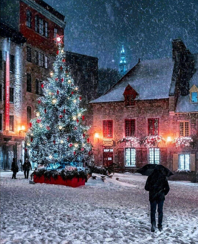 """Karácsonykor is segíti az egészségügyi dolgozókat az """"Etesd"""" szervezete - Hír TV"""