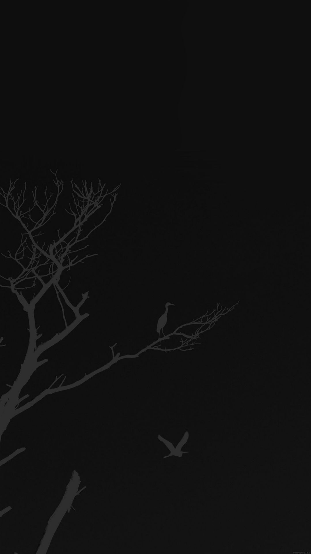 Bird Sunset Tree Dark Nature Minimal iPhone 6 wallpaper