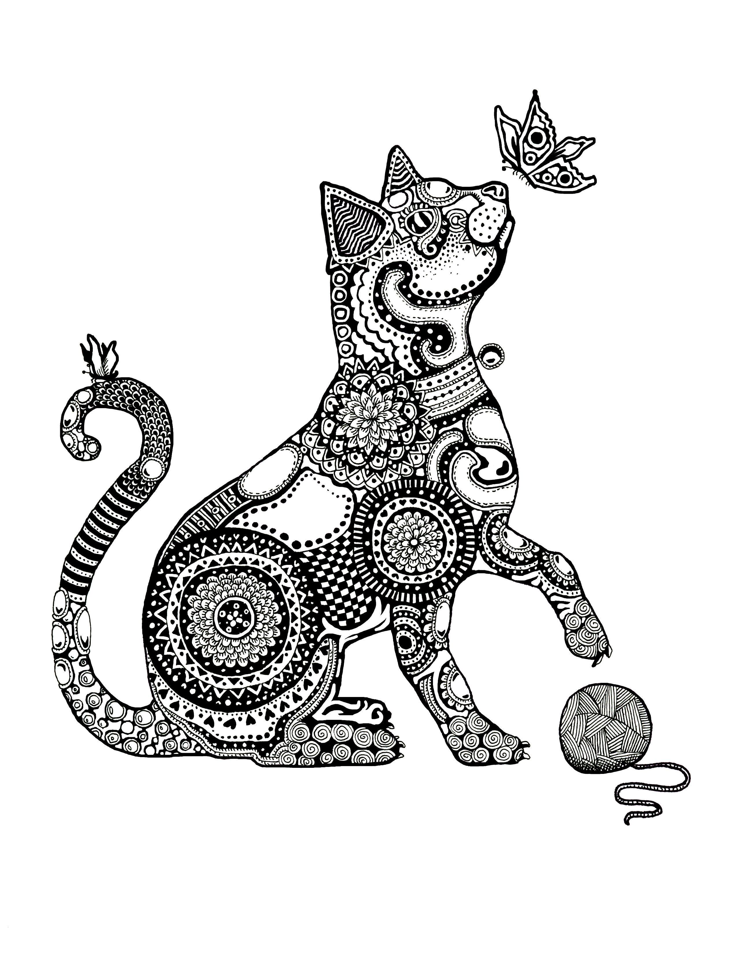 Cat With Butterfly Zentangle Traditional Ink On Bristol Janelle Dimmett 2016 Www Jan Mandala Coloring Pages Minimalist Wall Art Printable Mandala Coloring [ 3300 x 2550 Pixel ]
