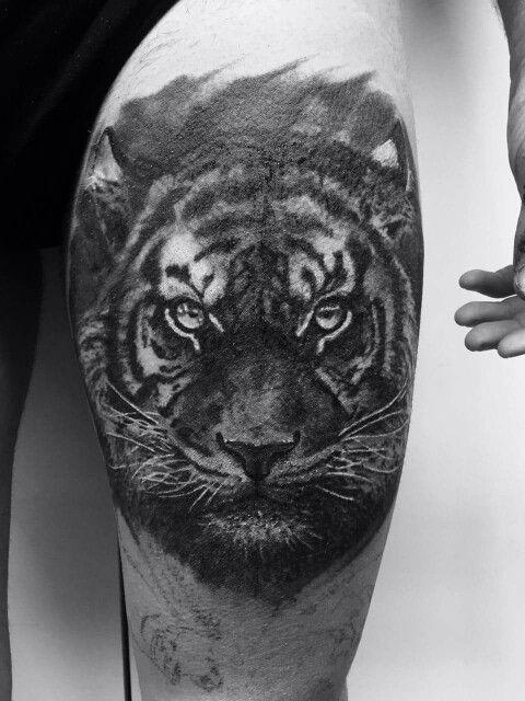 Tiger black&grey www.pullmaxart.com