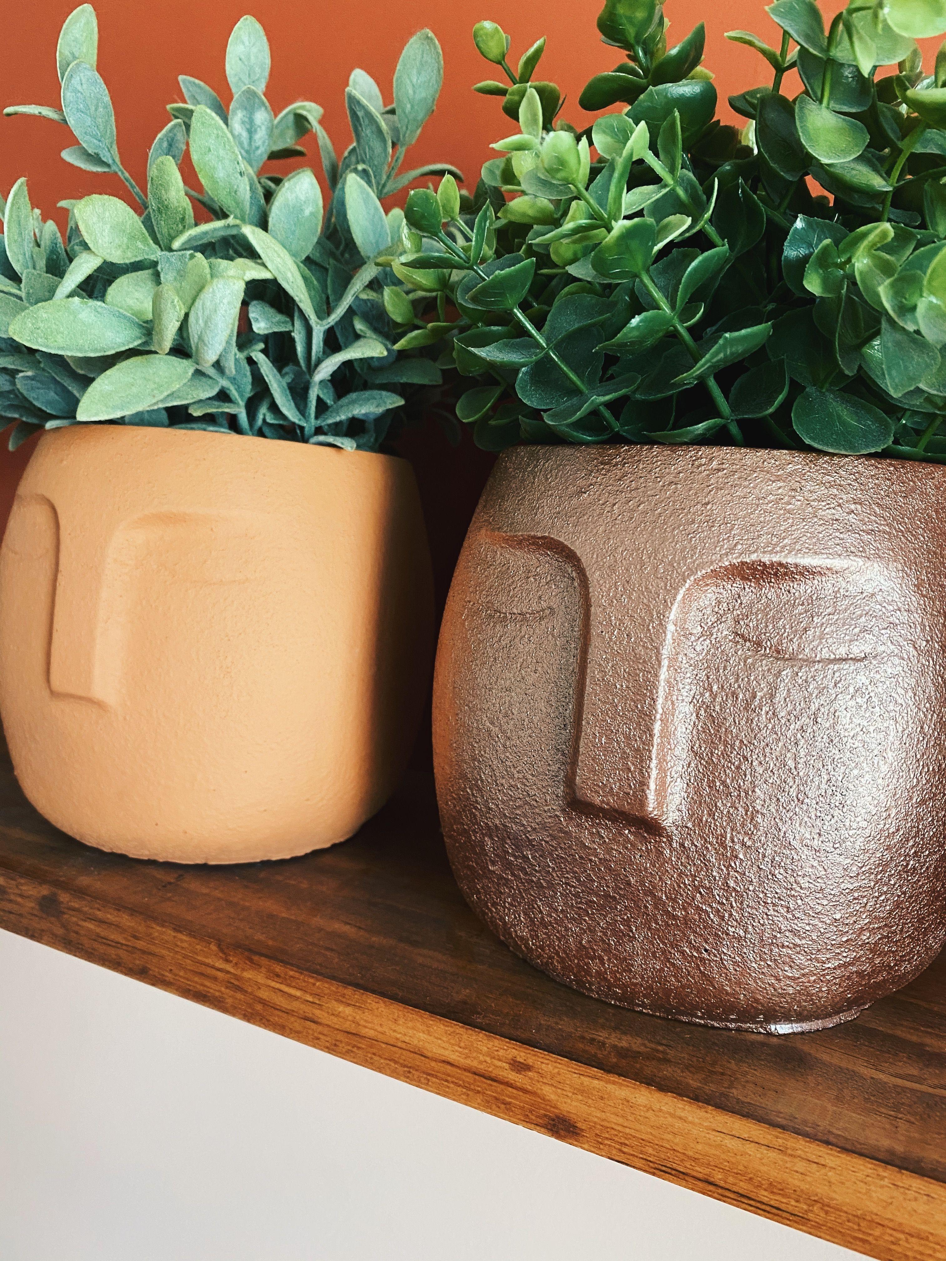 Large face planter with drainage indoor plant pot unique