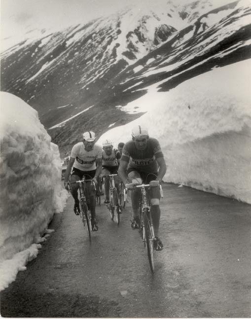 Passo Dello Stelvio Giro D Italia 1965 Bitossi Adorni In Maglia Rosa E Zilioli Cycling Art Cycling Pictures Cycling Race