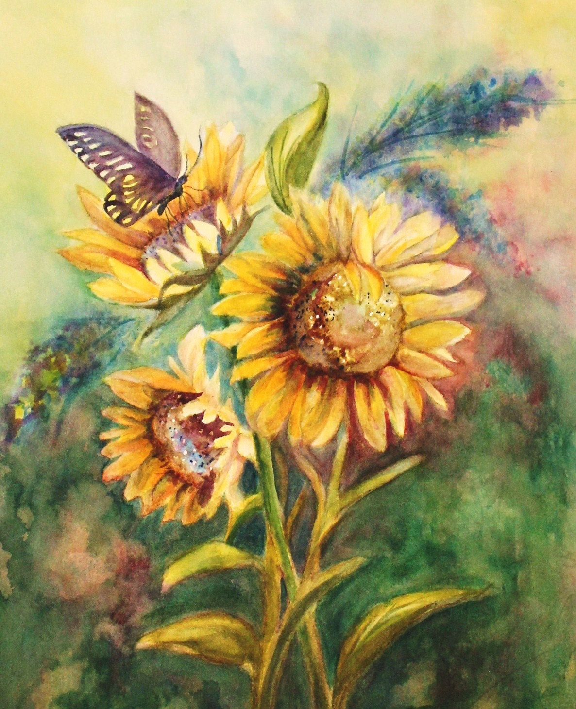 Original Watercolor Painting Butterfly With Sunflowers Fine Art