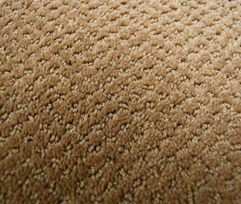 Multi Colored Textured Loop Carpet Cut Loop Carpet Is A