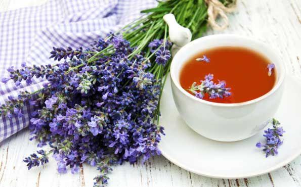 Lavanta Çayının Faydaları - http://m-visible.com/lavanta-cayinin-faydalari.html