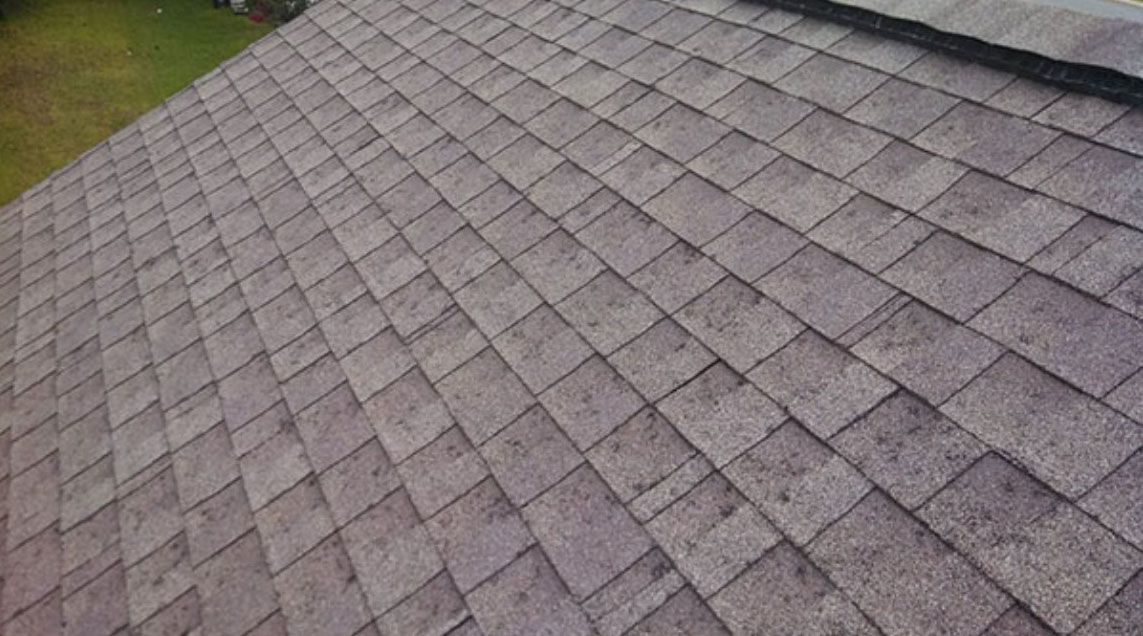 Hail And Wind Storm Shingle Roofing Damage San Antonio Tx Roof Damage Roofing Roof