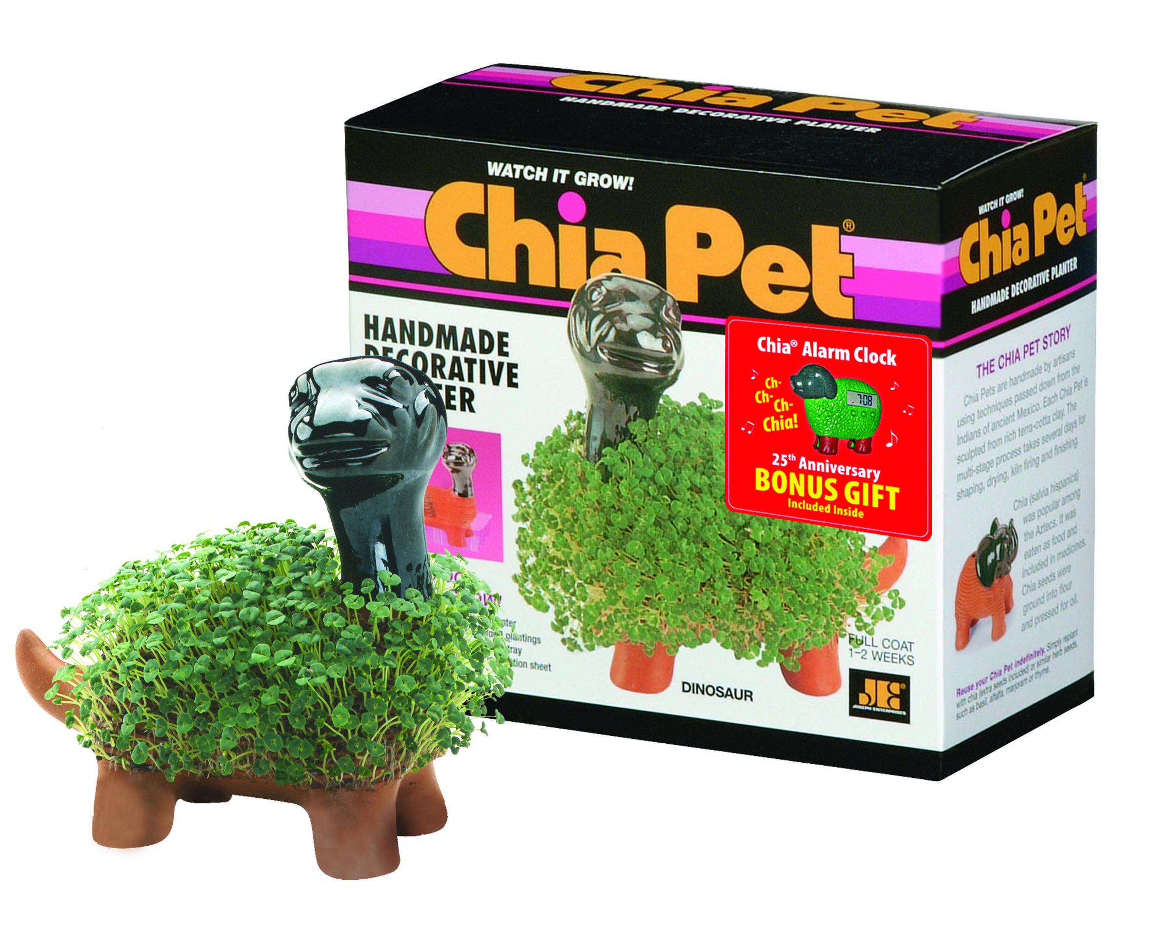 Chia Dinosaur Chia Pet Dinosaur Pets