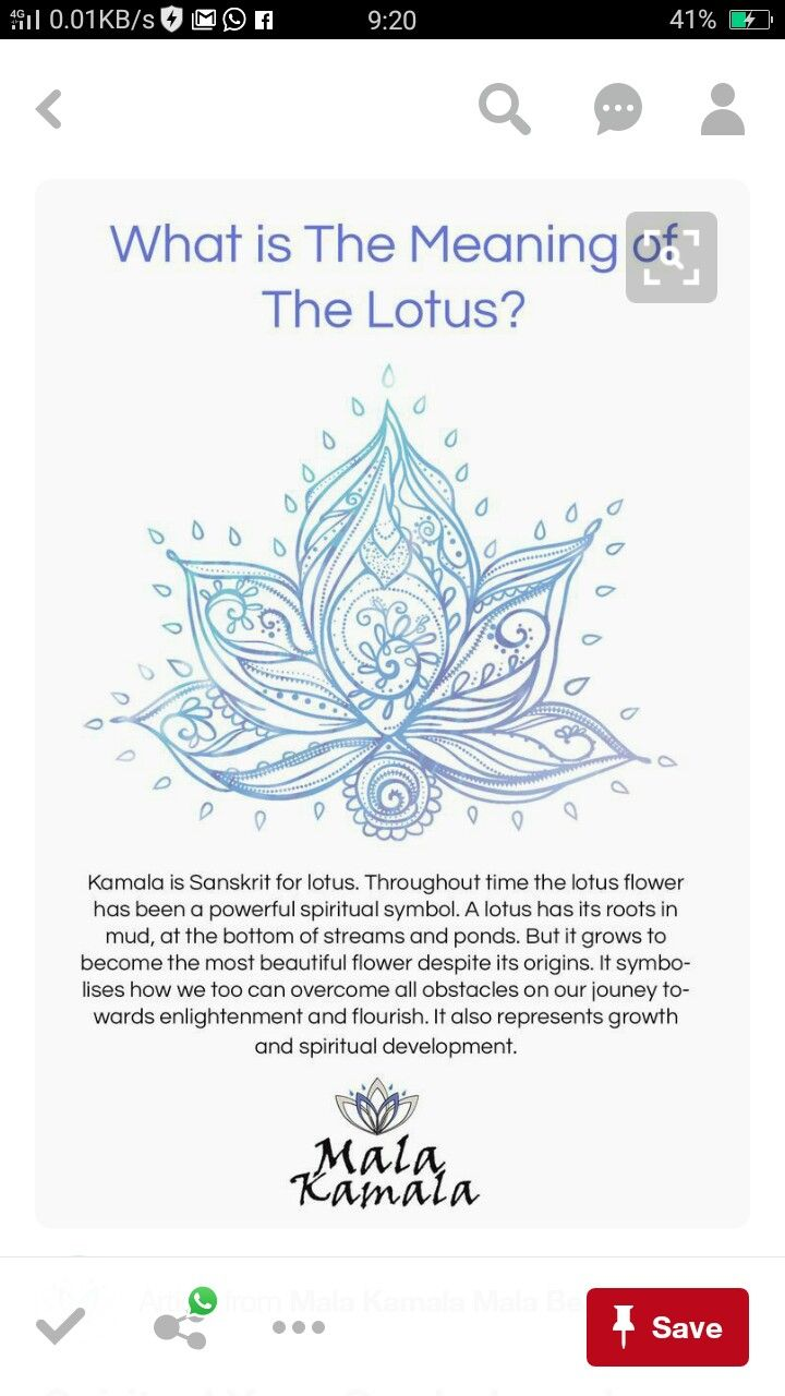 What does the lotus flower represent image collections flower pin by seema pathak on occult science institute pinterest what is the significance of the lotus izmirmasajfo Images