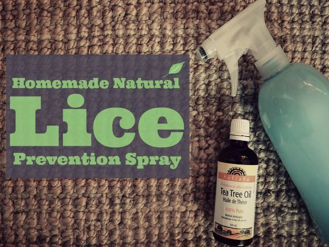 How To Get Rid Of Head Lice Naturally Yahoo