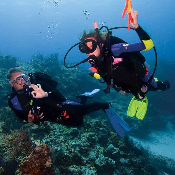 Get A Padi Certification In Miami At North Miami Divers We Offer Padi Open Water Diver Cour Learn To Scuba Dive Scuba Diving Pictures Scuba Diving Photography
