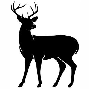 Deer Silhouette Vector Image In 2020 Deer Silhouette Silhouette Vector Silhouette Svg