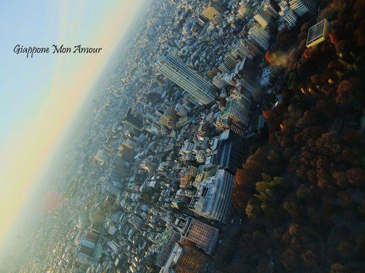 GIAPPONE MON AMOUR : Tokyo e il Monte Fuji dall'alto dei grattacieli di Shinjuku