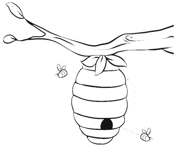 Beehive Coloring Pages With Images Bee Coloring Pages