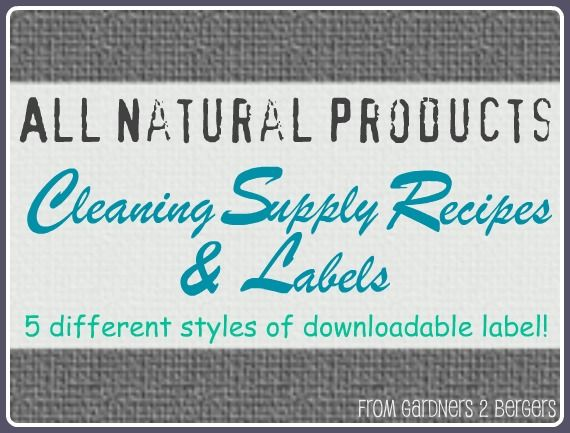 Downloadable Labels for Homemade Cleaning Products + More Recipes