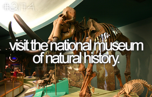 bucket list: visit the national museum of natural history. DONE!