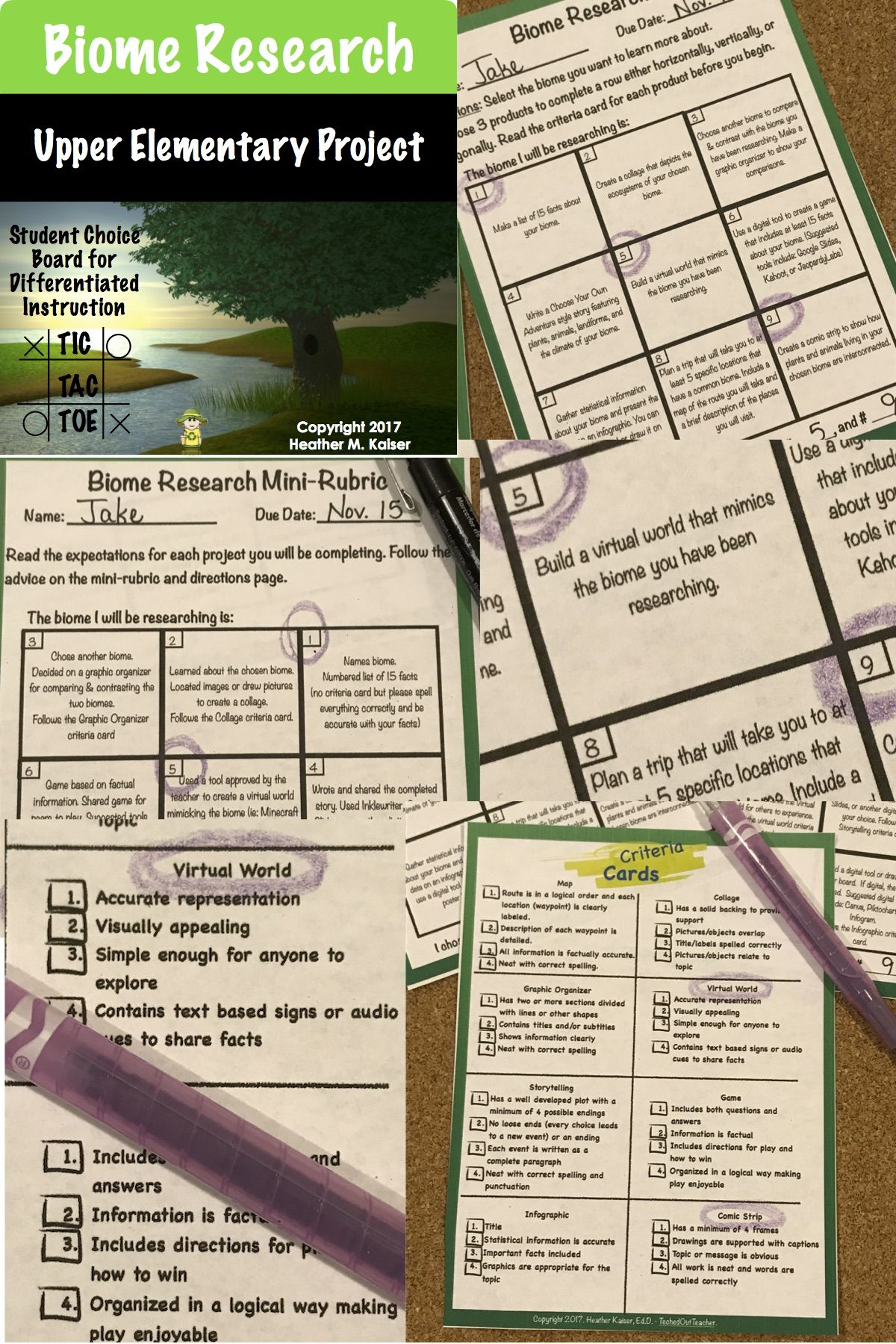 Biome Research Tic Tac Toe Differentiated Learning Plan | Biomes ...