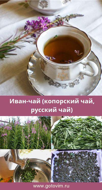 Иван-чай (копорский чай, русский чай). Рецепт с фото в ...