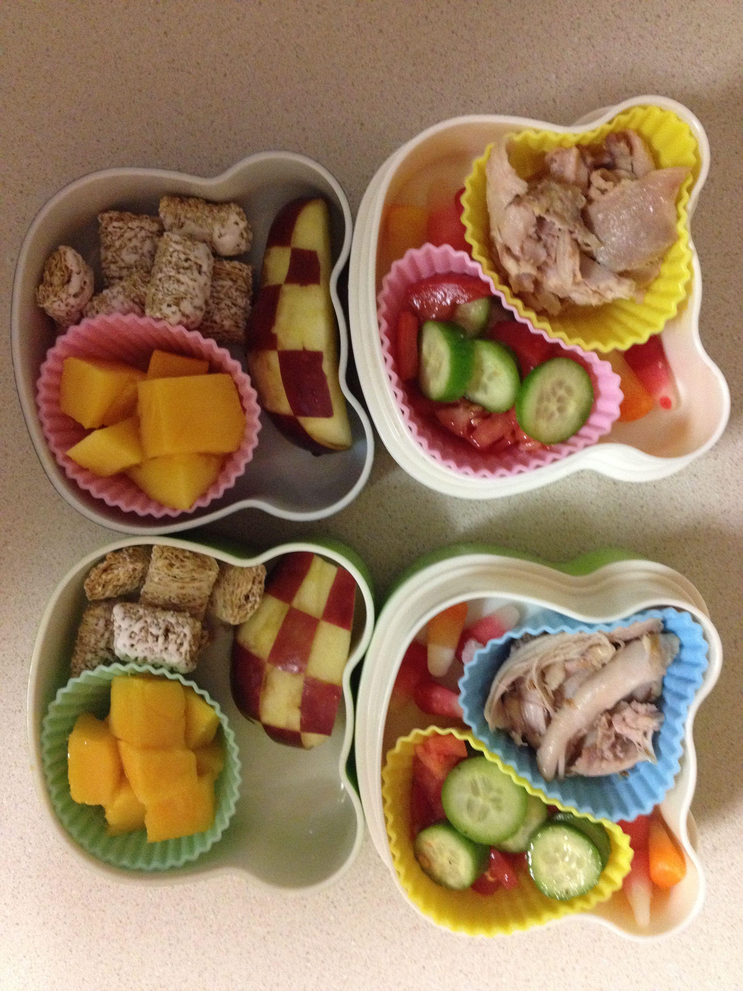 Bento with turkey, tomato/cucumber salad, checkerboard apple, mango, shredded wheat