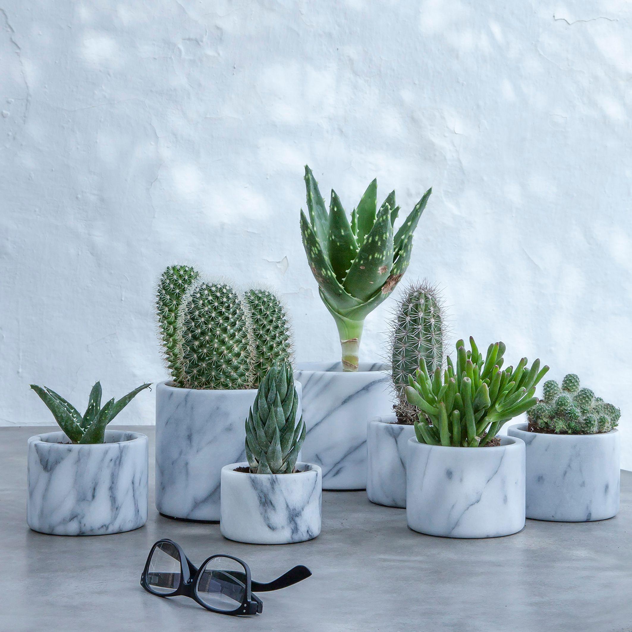 pot en marbre sevan am pm la redoute soldes pots plantes pinterest la redoute soldes la. Black Bedroom Furniture Sets. Home Design Ideas