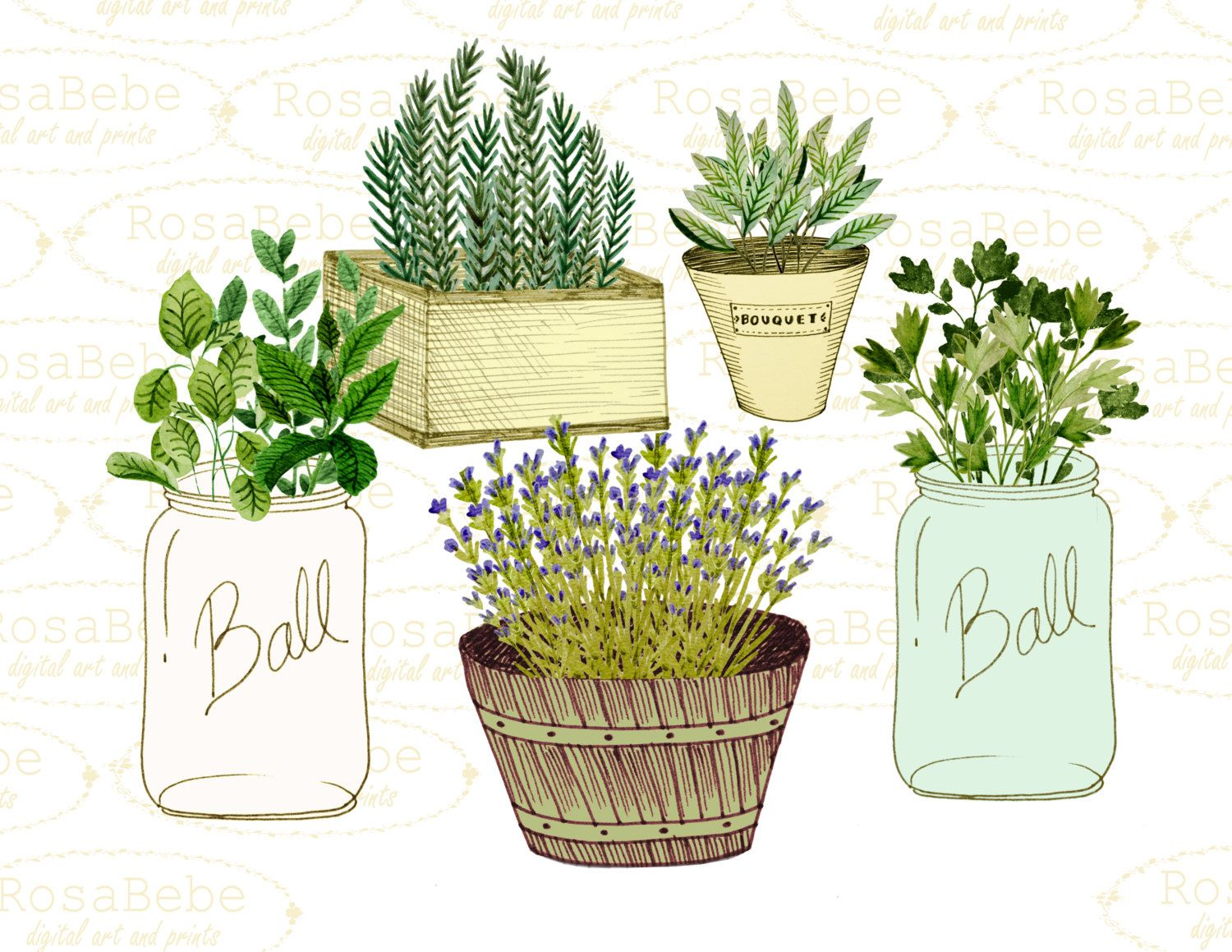 Botanical Clipart Watercolor Botanicals Clipart Gardening
