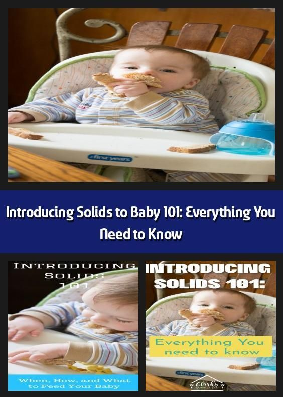 Presentation of Solids to Baby 101 everything you need to know  I  Presentation of Solids to Baby 101 everything you need to know  I