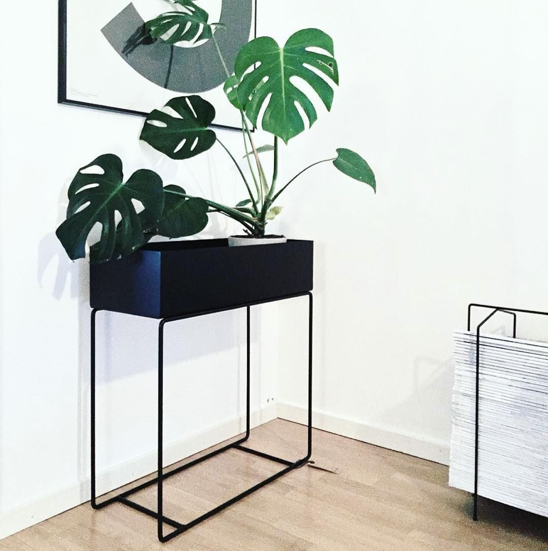 ferm living plant box. Black Bedroom Furniture Sets. Home Design Ideas