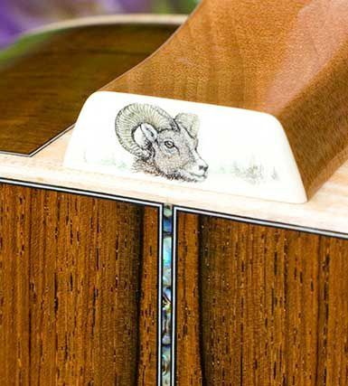 3c935303d97 Custom Froggy Bottom Guitar Model-H12 detail  scrimshaw Mammoth ivory heel  cap custom engraved with a big horn sheep portrait by Vermont fine artist  Petria ...