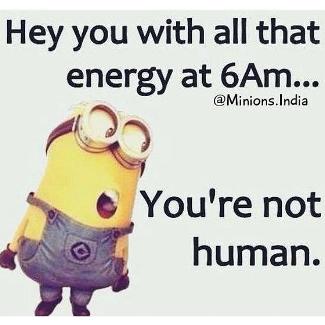 Hey You With All That Energy At 6am You Re Not Human Funny Minion Quotes Minions Funny Funny Good Morning Quotes
