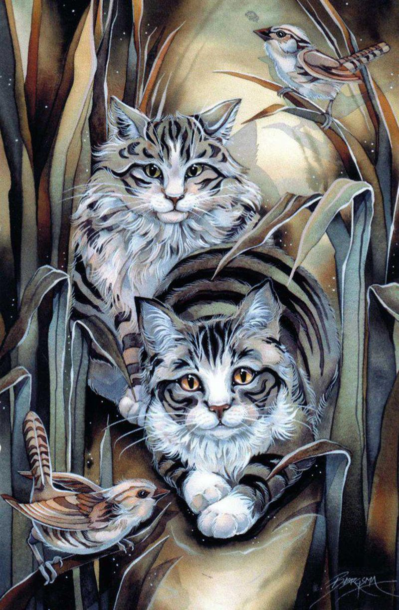 """Tabby or not Tabby? Is that the Question?"" par Jody Bergsma"