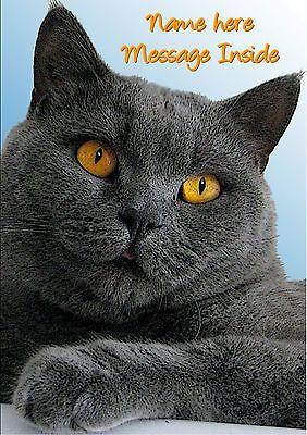 Personalised British Blue Grey Cat Kitten Birthday Any Occasion Card Illusinsert Cards Stationery Celebrations Grey Cats Kitten Birthday Cats And Kittens