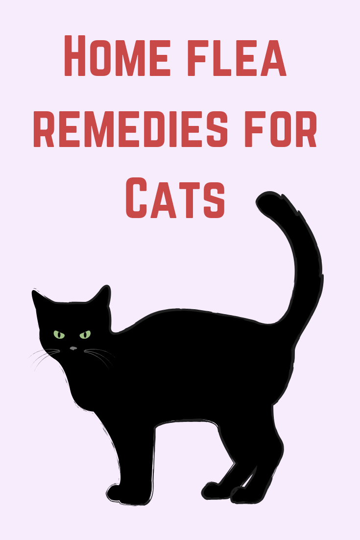 Home Remedies For Fleas On Cats Without Bathing Cat Fleas Home Remedies For Fleas Flea Remedies