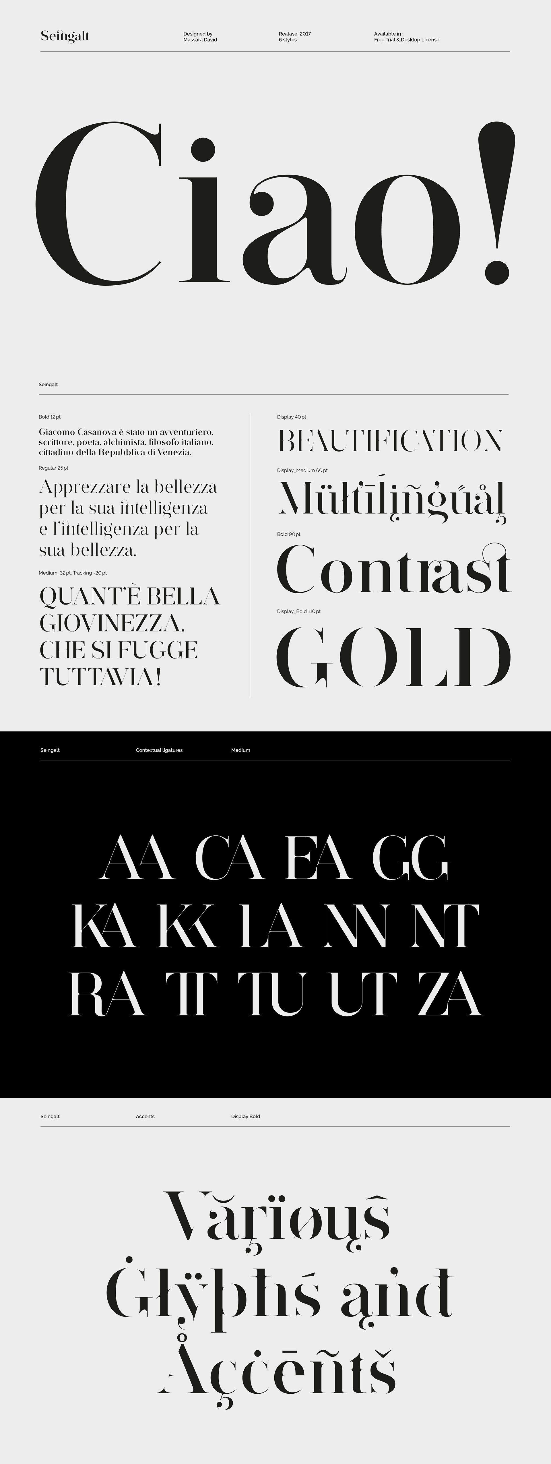 Seingalt Free Font Best serif fonts, Logo fonts, Modern