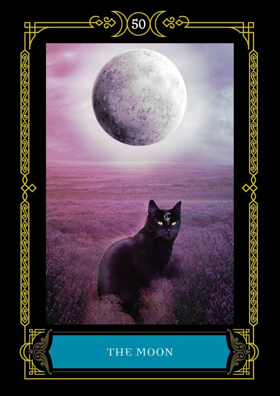 Moon Colette Baron Reid Oracle Cards Founder Of Oracle School Oracle Cards House Of Night Angel Oracle Cards