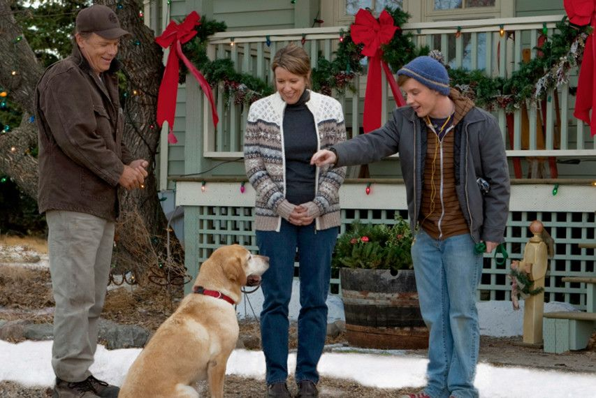 A Dog Named Christmas.A Dog Named Christmas One Of My Favorite Christmas Movies