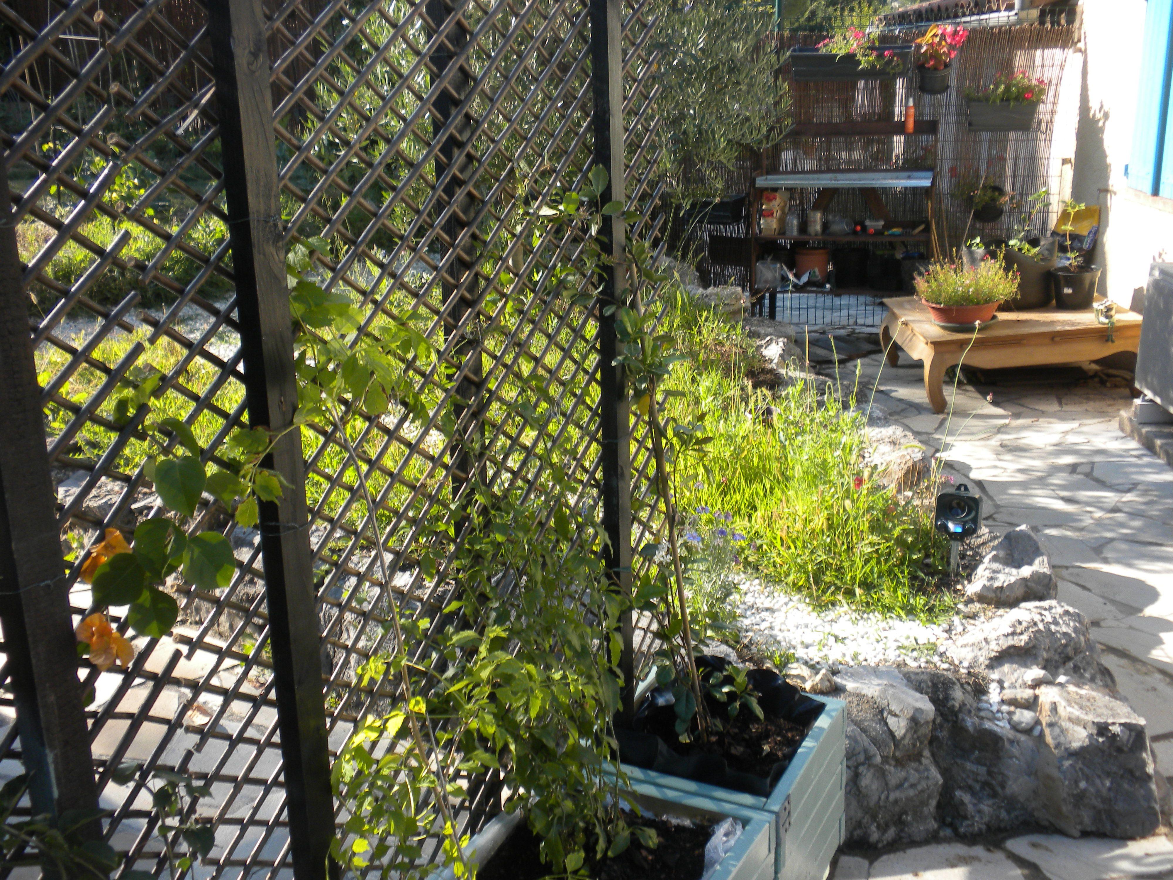 Brise Vue A Faire Soi Meme jardinières brise-vue homemade! | brise vue, maison et jardins