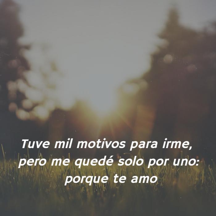 Frases De Amor Solo Hace Falta Un Motivo Para Quedarse
