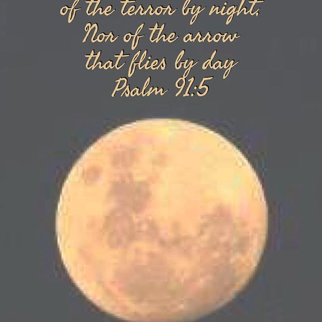 Psalm 91:5 You shall not be afraid of the terror by night, Nor of the arrow that flies by day
