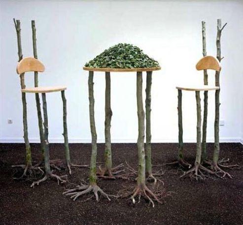 The Plant Kingdom, Bob Verschueren