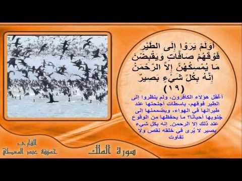سورة الملك بالصور المعبرة والتفسير الميسر Words Ms Word Pics