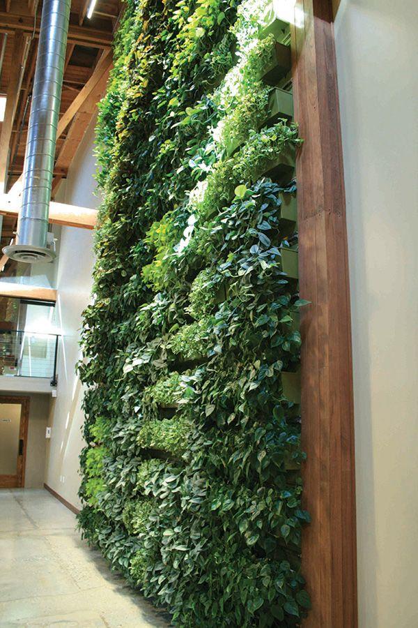 Willow-Street-Indoor-Living-Wall   Exterior Design   Pinterest