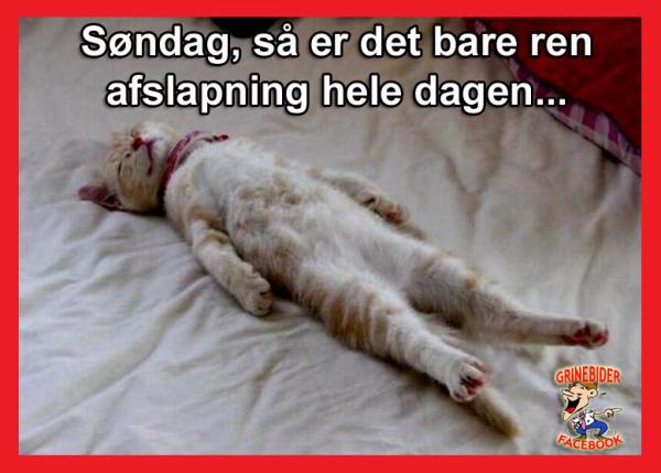 God søndag ;-)