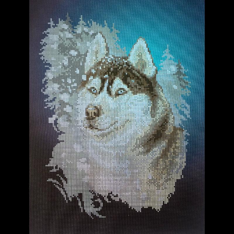 Husky. Esquema para el bordado con abalorios. Precio 17,90€. Tamaño 24*34 cm El Siberian Husky es la raza canina que se parece más al lobo, no sólo por su físico sino también por su personalidad. Es amable, activo, cordial, afectuoso, independiente y un poco desobediente.