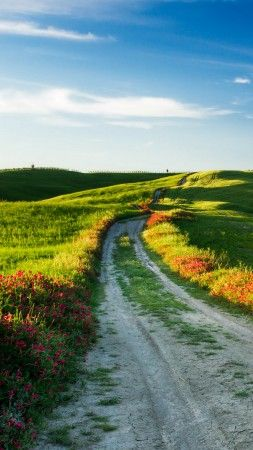 Tuscany 4k Hd Wallpaper Italy Meadows Road Wildflowers Sky Vertical Nature Wild Flowers Road