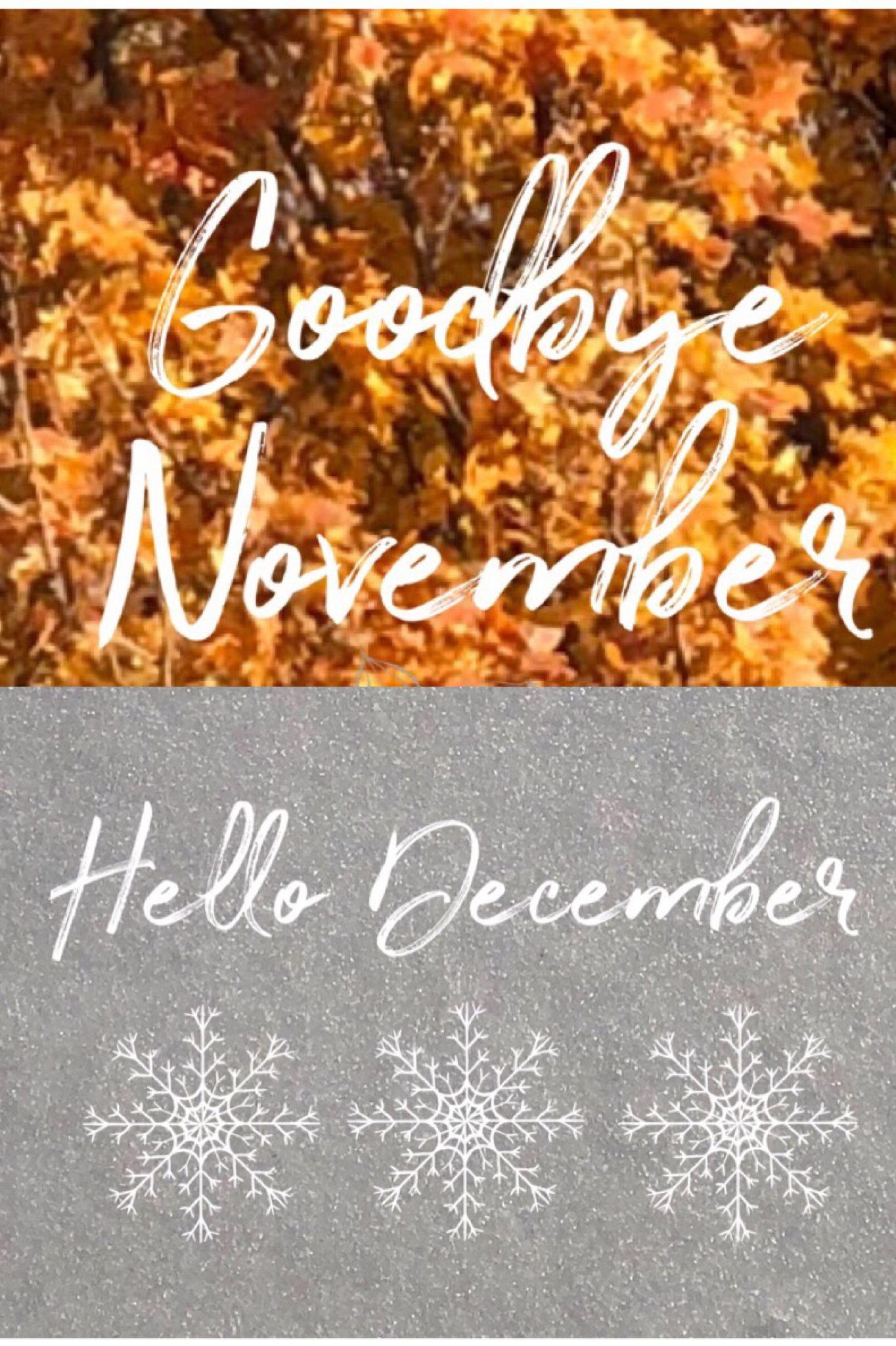 goodbyenovemberhellodecember goodbye november hello