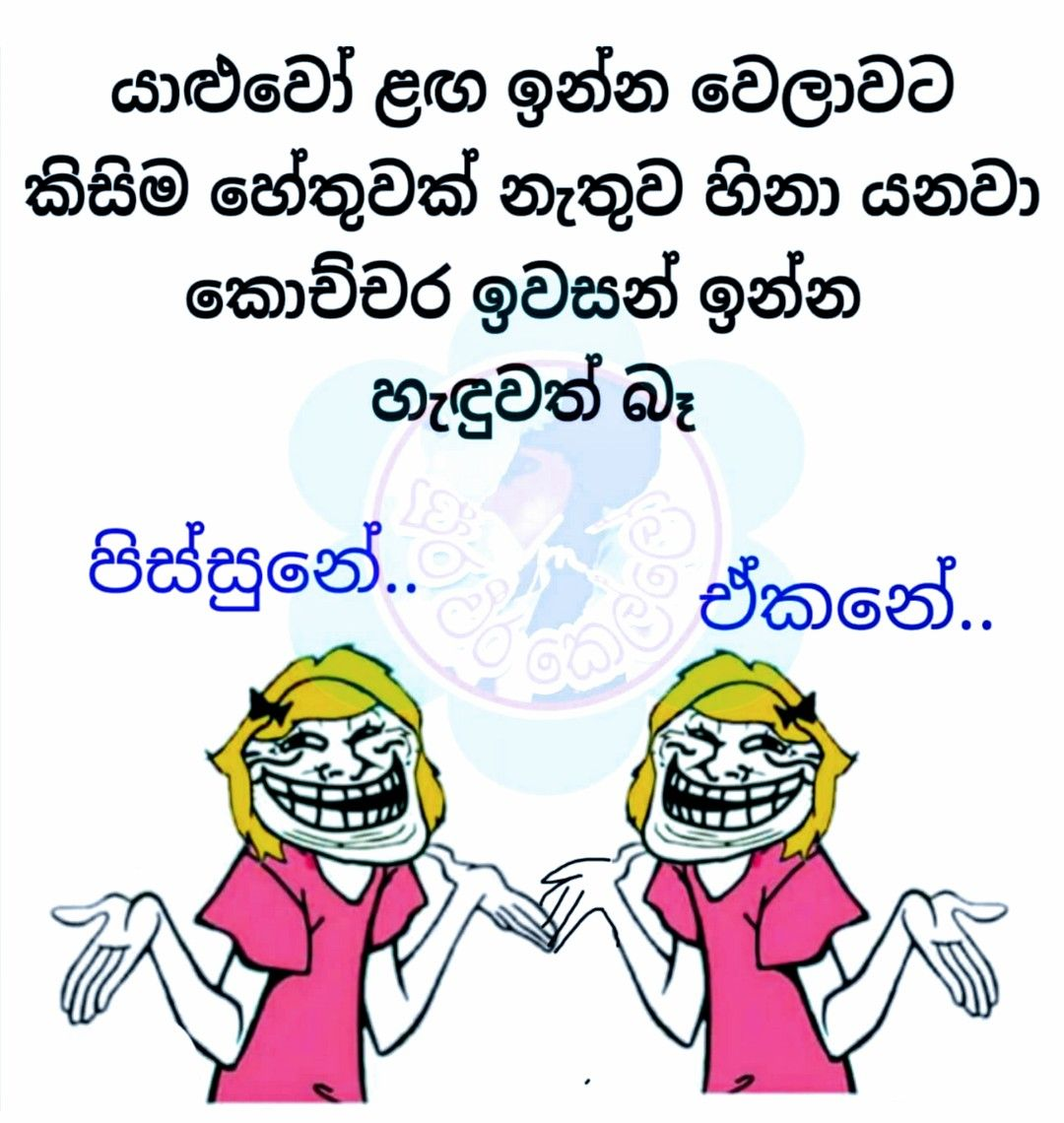 Pin By Fathi Nuuh On Lankan Memes Friendship Quotes Funny Jokes Quotes Bff Quotes