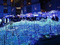 Seasonal Illuminations In Tokyo And Japan Winter In Japan Japan Guide Tokyo Winter