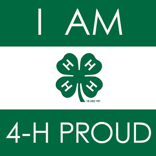 Clip Art 4-h Clover Clip Art 1000 images about 4 h graphics on pinterest camp signs and camps